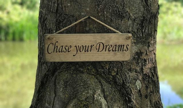 Austin Sloan Chase Your Dreams Wooden Sign Indalocio