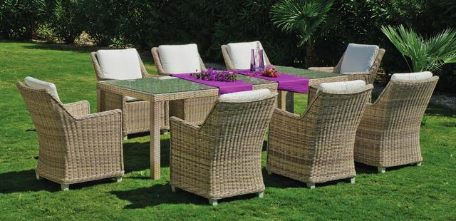 Izamel/Ainhoa 8 Seater Dining Set