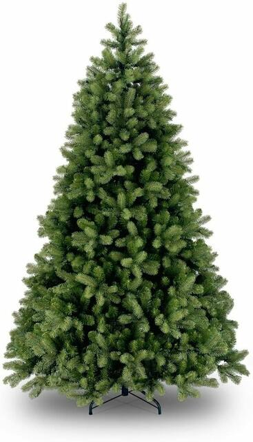 6.5' Bayberry Spruce Christmas Tree